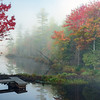 Adirondacks Pond Dock