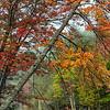 Adirondack Pond in Fall
