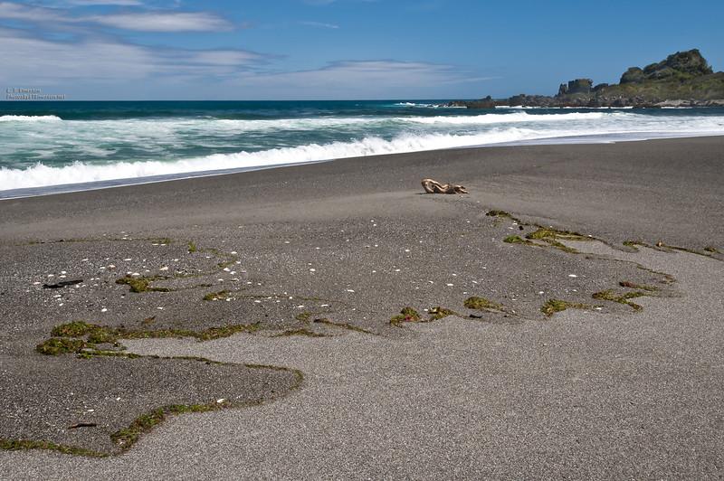 Martin's Bay Beach