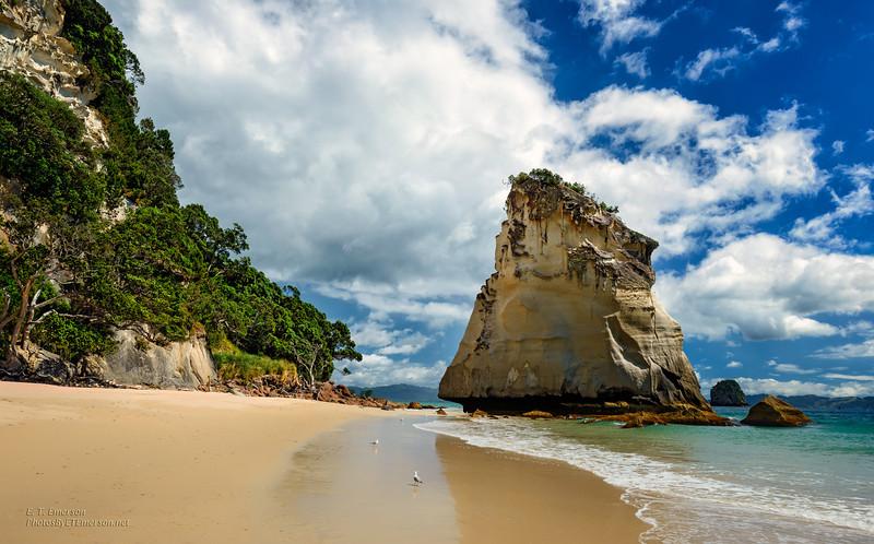 Cathedral Cove, Coromandel Pen., NZ