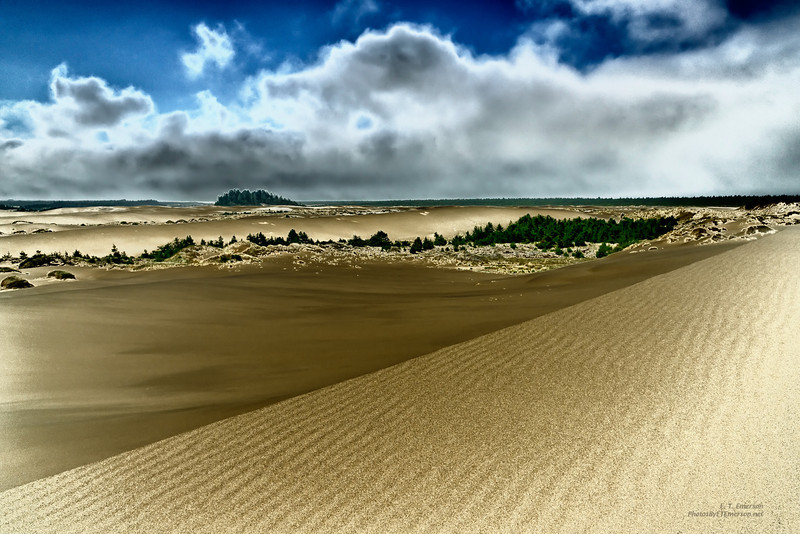 Oregon Dunes National Recreation Area (Solarized)
