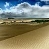 Oregon Dunes National Recreation Area (Solarized)