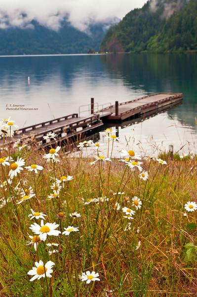 Crescent Lake Dock