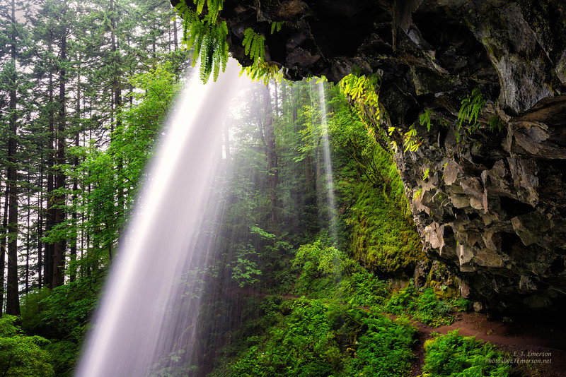 Columbia Gorge Fall