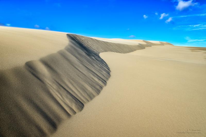 Oregon Dunes National Recreation Area