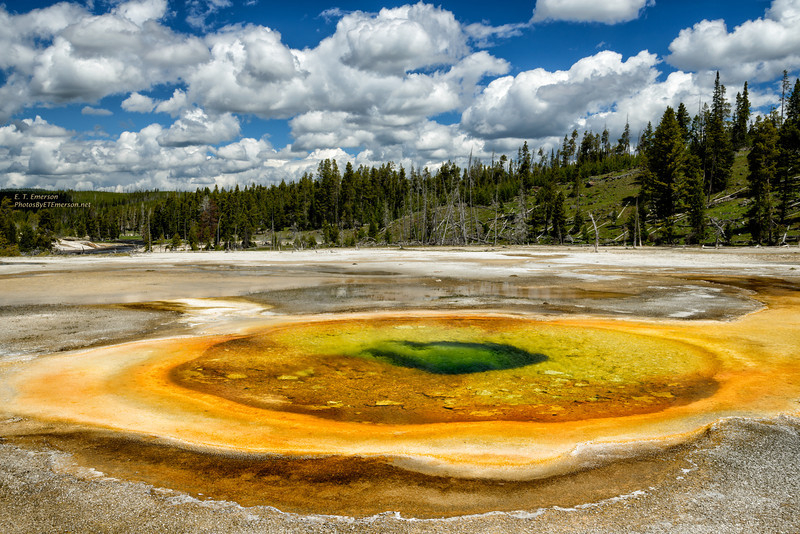 Colorful Geyser in Upper Geyser Basin