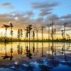 Billy's Island Sunset