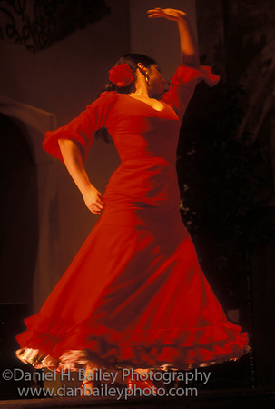 Flamenco dancer, Andalucia, Spain