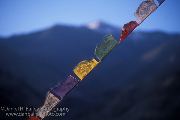 Buddhist prayer flags, Ladakh, India