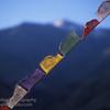 Buddhist prayer flags, Ladakh, India