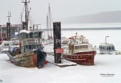 Frozen Boats in Mission 13x19 print
