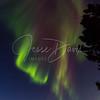 Aurora, NP/AK, 10/12-13/2016.             #Alaska #NorthPole #NorthernLights #AuroraBorealis #JesseDavisImages