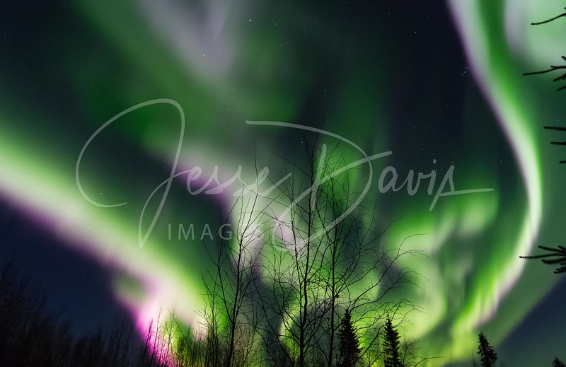 Aurora, North Pole/AK, 10-28-2016.