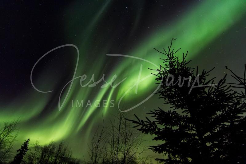 Aurora, North Pole/AK, 11-02-2016