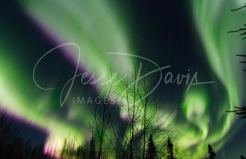Aurora, North Pole/AK, 10-28-2016.