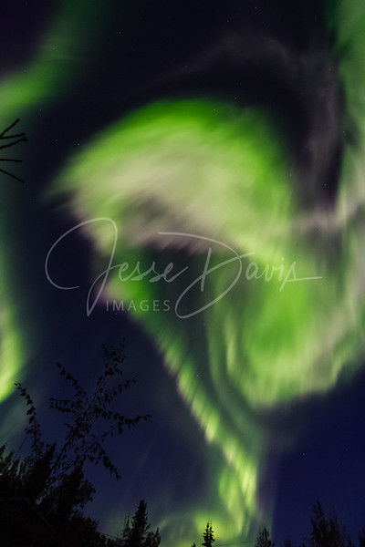 Aurora, North Pole/AK, 08-31-2016.
