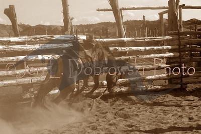 Bronc a la Huffman Makoshika Breaks Ranch Dawson County, Montana  2006