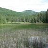 Liad Hot Springs on the Alaskan Highway, British Columbia