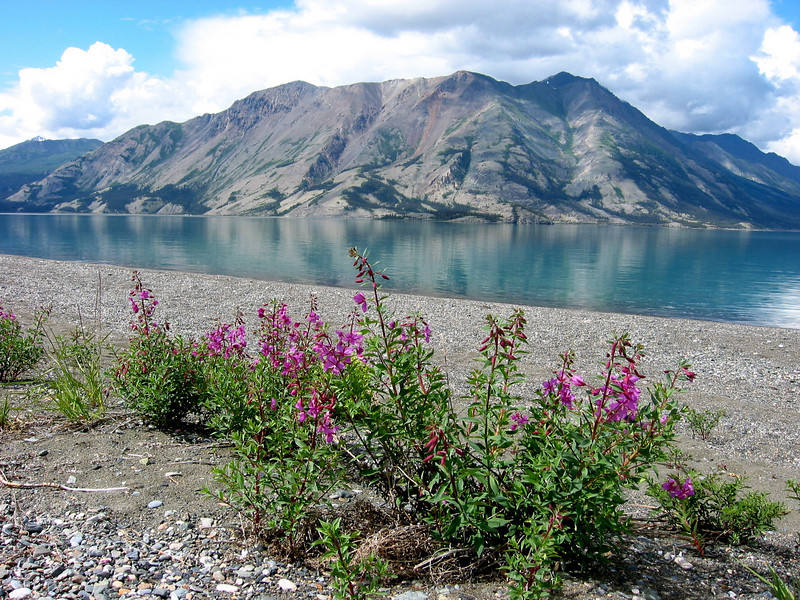 Alaskan Highway, Yukon