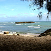Turtle Bay, Oahu Hawaii