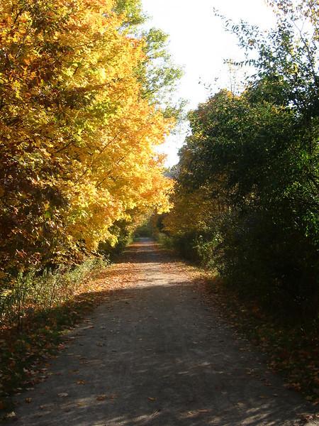 Montour Trail, Imperial PA