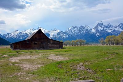 The Mormon Cabin