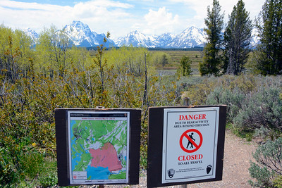 Bear Habitat Warning Signs everywhere