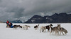 Dogsledding on Denver Glacier, South of Skagway, Alaska, July 2011.