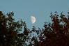 Moonrise in September 2009.