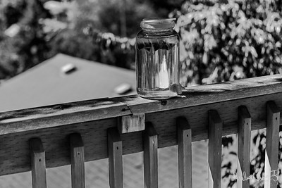 sun tea bw (1 of 1)-2