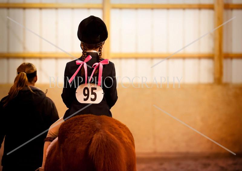 Hobby Horse -65