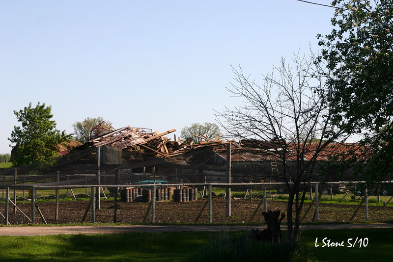 """""""....a tornado leveled an old barn on the 600 acre Olson Farms in Larsen..... """"It went across the field and destroyed four wagons and blew the back of a shed out and a bunch of trees,"""" Matt Olson of Olson Farm says.  """"Cows were in the barn at the time, but weren't hurt."""""""