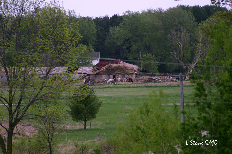 The barn that was hit taken from my front yard.
