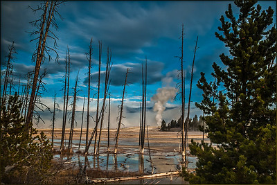 Looking Back - Yellowstone National Park