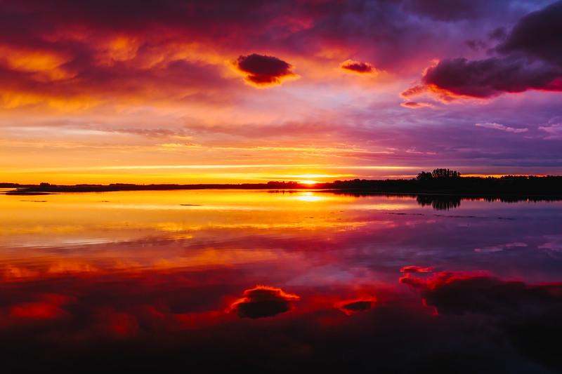 Alvena Sunset 2
