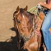 Tadpole: Heel Horse Deluxe!