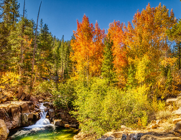 Sonora Pass Fall on Leavitt Creek