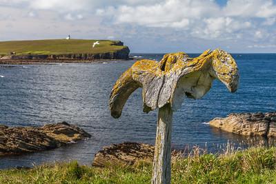 Birsay Whalebone, Skiba Geo, Orkney, Scotland