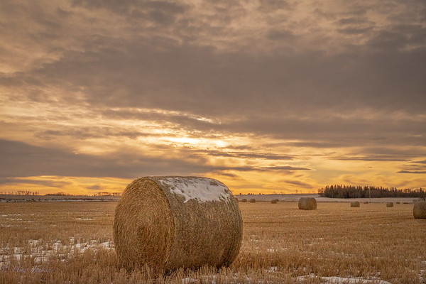 First snow on the high prairie