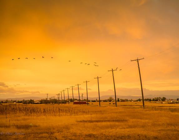 Early morning Montana