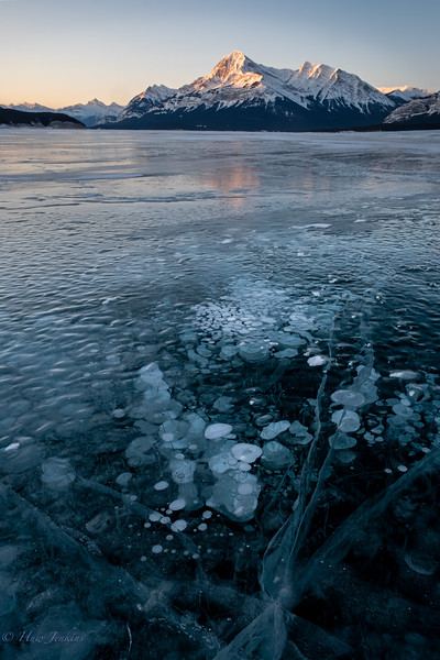 Methane bubbles at Abraham Lake on a very cold February morning