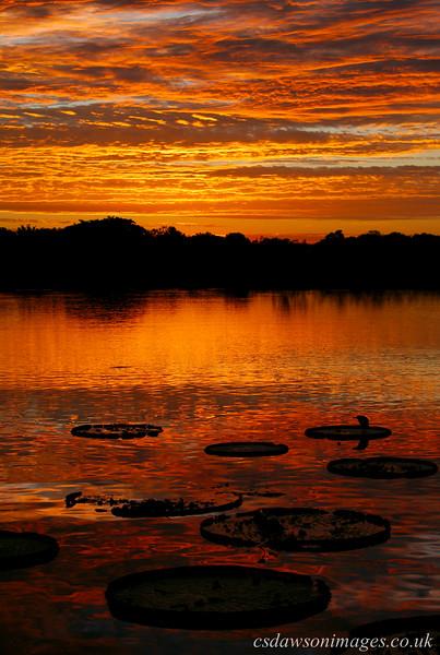 Sunset at Hotel Pantanal Norte