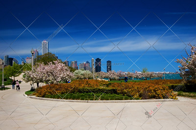 Chicago Lakefront garden including a piece of the skyline.