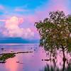 Ajijic Jalisco, Lake Chapala