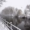 The River Severn, Coton Hill, Shrewsbury.