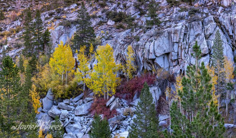 Bishop Canyon