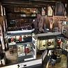 Shrewsbury Regimental Museum feature.