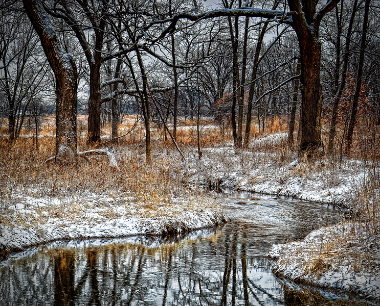 Winter At Water's Edge