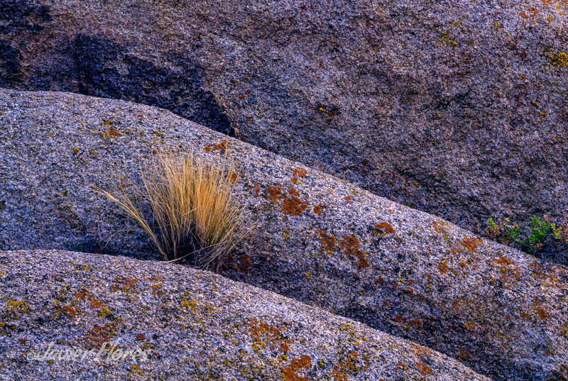Alabama hills rocks and grass