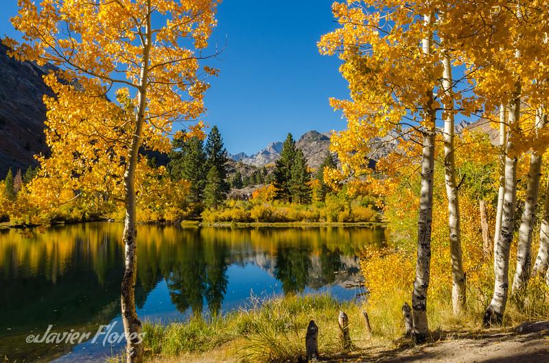 Aspen at Intake Lake II